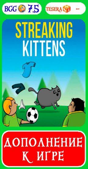 Бесстыдные котята
